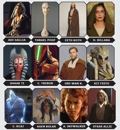 Meet the Jedi Masters from the Jedi Council, from Yoda to Plo Koon to Anakin Skywalker.