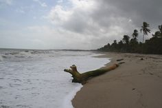 Palomino, La Guajira, #Colombia. Visit our website: http://www.going2colombia.com/