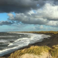 Thy National Park in Northern Denmark   is know for its stunning beaches and amazing waves. A surfers paradise we call Cold Hawaii because of our Nordic weather. From Thy comes a ton of delicious eats, too! Sea buckthorn beer, different kind of jams, rosebud vinegar and other gourmet twists of the #Danish kitchen based on ingredients from nature