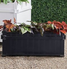 The boxed planters of the Orangerie and gardens at the Palace of Versailles have been icons since Louis XIV began his orange tree collection in 1663. We have replicated the famed design with our exclusive cast-aluminum Versailles Trough Planter, versatile enough for citrus trees, olive trees, boxwood (especially topiary) or large plants. Perforated bottom for drainage.