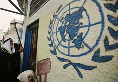 A Palestinian refugee knocks on the closed gate of the United Nations Relief and Works Agency (UNRWA) headquarters with his walking stick.