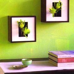 Una pared verde... Of course!!