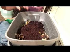 This video is about how to make a red wiggler worm compost bin. I will show you how to make the bin and what items to put in it. The parts used are two plast...