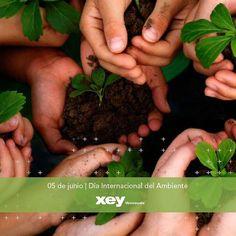 La iniciativa de cuidar del #Ambiente es tarea de todos. En #XEY trabajamos duro para mantener ser una empresa libre de contaminación. Así como queremos preservar la belleza de tu casa también cuidamos al #Planeta. Toma conciencia y acción HOY MISMO.  #EarthDay #DíaDelAmbiente # XEYTips #Wellness #Bienestar #ViveTuCocina @XEYvenezuela #cook #diseñointerior #cocinas #hogar #decoración #diseñodeinteriores #cocinasmodernas #cocinasespañolas #Barquisimeto #Tucacas #Maracay #Caracas #Cagua