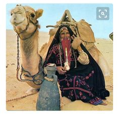 Israel - Bedouin woman with camel We Are The World, People Of The World, Animals Of The World, Streams In The Desert, Desert Life, Palestine, The Little Prince, North Africa, Vintage Posters