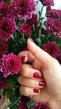 Berry Nails #trulymadlydeeply  # shellac
