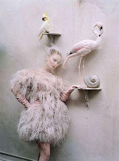 #moodboard #inspiration #event #dolls #fashion #hautecouture #poupée #poupées #mode #femme #woman #makeup #hair #china #delicate #porcelain #model #feather #dress #flamingo #parrot #veil #soft #pink #vintage