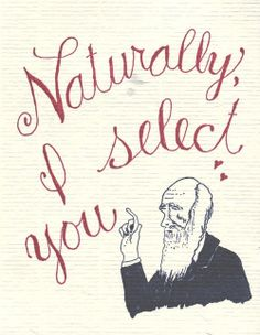 Charles Darwin/ valentines for the punny. My Funny Valentine, Science Valentines, Valentine Day Cards, Nerdy Valentines, Valentine Crafts, Charles Darwin, Little Presents, Science Jokes, Chemistry Jokes
