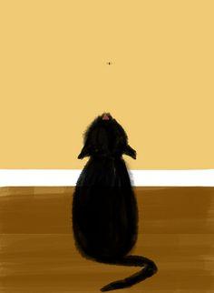 Cat by raccuia