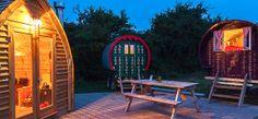 Barn Owl Camp at dusk