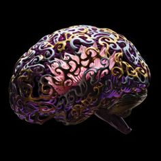 Neuroscience's New Toolbox. With the invention of optogenetics and other technologies, researchers can investigate the source of emotions, memory, and consciousness for the first time. Science Art, Science And Technology, Brain Art, Brain Injury, Anatomy And Physiology, Research Projects, Learning Resources, Tool Box, Consciousness