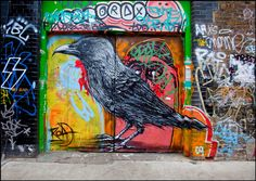 Roa, Black Bird, London - unurth | street art