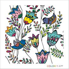 Happiness birds