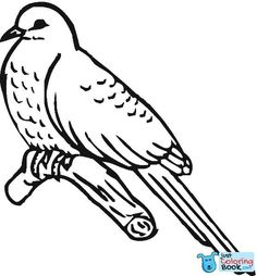 Best Printable Common Cuckoo Bird Coloring Pages and others free printable coloring pages for kids and adults! Just free for you! Flamingo Coloring Page, Bird Coloring Pages, Coloring Pages For Girls, Christmas Coloring Pages, Free Printable Coloring Pages, Coloring Books, Bird Outline, Outline Images, Bird Applique