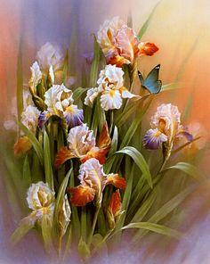 http://veran.gallery.ru/watch?ph=bKuo-ffaPf