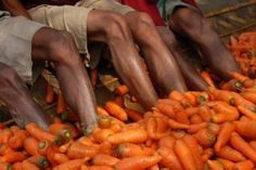 Some microcredit borrowers husbands cleaning the carrots they grew.