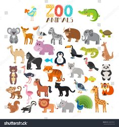 Illustration about Vector collection of Zoo animals. Set of cute cartoon animals. Illustration of forest, animal, illustration - 76965679 Cute Cartoon Animals, Baby Animals, Cartoon Birds, Brisbane, Melbourne Australia, Surfer, Animal Sketches, Animal Illustrations, Funny Animal Videos