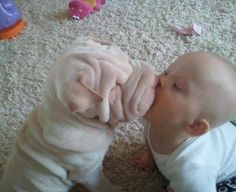 28 Cutest Puppy Pics Ever | Dropfacts | Page 18
