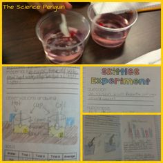 The Science Penguin: Skittles Experiment