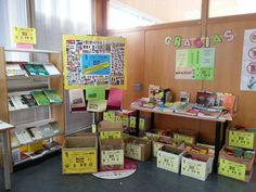 Biblioteca Hypatia de Alejandría. Campaña de Recogida de Alimentos. Agradecimiento.