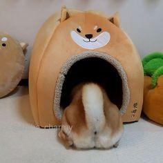 ホリホリ~カミカミ~ひょっこり(*^ω^*) こんな感じで毎日遊んでます( ̄m ̄*) #柴犬グッズ#柴田さん#しばたさん #柴尻