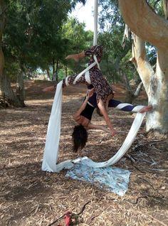 Aerial silks doubles tree