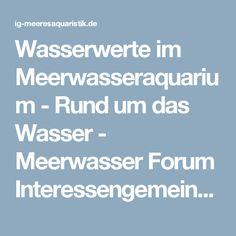 Wasserwerte im Meerwasseraquarium - Rund um das Wasser - Meerwasser Forum Interessengemeinschaft-Meeresaquaristik, sowie unabhängige Vereinigung für Marine Nachzuchten.