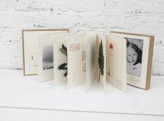 Livre album the collection