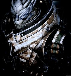Garrus - Don't think that I do not understand loyalty just because I have no one left to be loyal to.