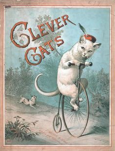 This quirky Victorian poster features the Clever Cats, who performed in an 1888 show at London Pavilion, Piccadilly. The original poster is part of the British Library's Evanion Collection of over 5000 pamphlets, handbills and miscellaneous printed matter relating to Victorian entertainment and everyday life, collected by the stage magician and ventriloquist Henry Evans - Evanion to his audience. http://prints.bl.uk/art/429299/The_Clever_Cats