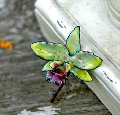 Items similar to Pale Green Cattleya Orchid Hybrid - Enameled Pin on Etsy Sunflower Necklace, Sunflower Jewelry, Floral Necklace, Flower Earrings, Enamel Jewelry, Copper Jewelry, Jewelry Art, Jewelry Design, Cattleya Orchid