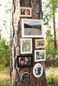 would love to do this  outdoor wedding - couple's story on the trees--lead them along the path with the story