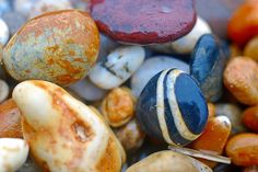 Love Rocks, Rocks And Gems, Rocks And Minerals, Rock Background, Rock And Pebbles, Rock Of Ages, Beach Rocks, Sticks And Stones, Seashell Crafts