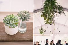 Gorgeous Kangaroo Valley Wedding Flowers
