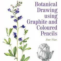 Member Books – The Society of Botanical Artists
