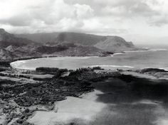 Hawaiian Historical Society Historical Photograph Collection   Aerial View of Hanalei Bay  1947
