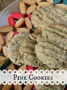 Pine Cookie Recipe - made with dried and powdered pine needles combined with the flour.