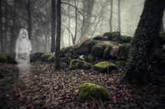 What Characterizes Gothic Fiction?: Gothic fiction focuses on the supernatural, family curses, and madness. The most classic characteristic of Gothic fiction is. Historical Women, Historical Pictures, What Is A Folktale, Scary Urban Legends, Ghost Walk, Asian History, Greek History, Tudor History, British History