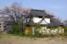Japanese castles I've visited: #110 Zeze Castle in Shiga Prefecture.