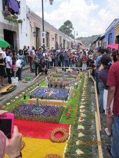 Alfombras de Aserrin - in front of Fusion restaurant. Easter Week (Semana Santa) in Antigua, Guatemala People Art, Culture Travel, Folk Art, Dolores Park, Easter, Restaurant, Urban, Street, Disney