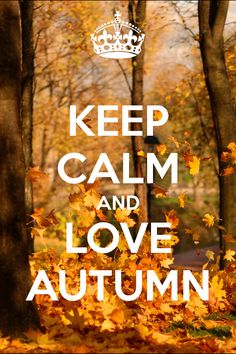 KEEP CALM AND LOVE AUTUMN. Another original poster design created with the Keep Calm-o-matic. Buy this design or create your own original Keep Calm design now. Keep Calm And Love, My Love, Fall Inspiration, Keep Calm Quotes, Happy Fall Y'all, Time Of The Year, Fall Season, I Fall, Fall Halloween