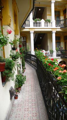 Budapest, Hungary  flowers everywhere.  photoblog.com/utazo