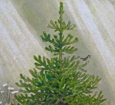The Fir Tree Hans Christian Andersen Book   Emma Hill: Hans Christian Andersen Fairy Tales ...