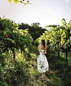 {Drew Barrymore in Italy} i heart Drew + want to try out her wine label!