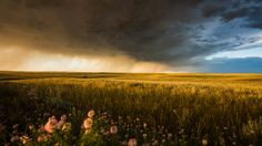 Stormscapes. The Great Plains of the United States produce the most beautiful thunderstorms, supercells, and unique cloud structures in the ...