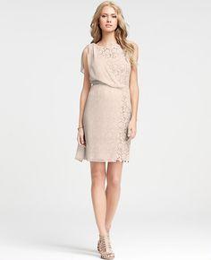 Ann taylor abbey floral lace sheath dress