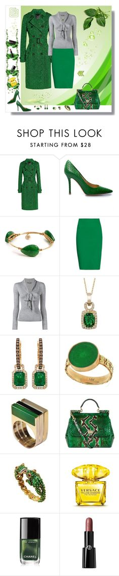 """Career look in green"" by deborah-518 ❤ liked on Polyvore featuring Burberry, Salvatore Ferragamo, Bourbon and Boweties, Tomas Maier, Alexander McQueen, LE VIAN, Dolce&Gabbana, Versace, Chanel and Giorgio Armani"