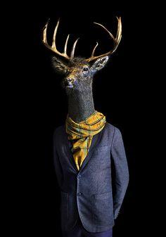Miguel Vallinas Prieto (Second Skins) Pop Illustration, Art Photography, People Art, Animal Art, Pop Art Animals, Creative Portraits, Fae Art, Animal Portraits Art, Animal Heads