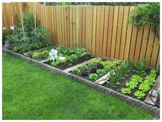 Home Vegetable Garden Design, Backyard Vegetable Gardens, Backyard Garden Design, Small Garden Design, Outdoor Gardens, Vegetables Garden, Fence Garden, Small Yard Vegetable Garden Ideas, Backyard Patio