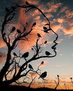 Turkish Artist Abdullah Evindar Creates Fantastic Surreal Silhouette Photo Collages How beautiful are Abdullah Evindar blended media collages! In this collection the artist blended silhouettes with. Illusion Kunst, Illusion Art, Optical Illusion Paintings, Optical Illusions, Collage Foto, Photo Collages, Surreal Art, Tree Art, Art Pictures
